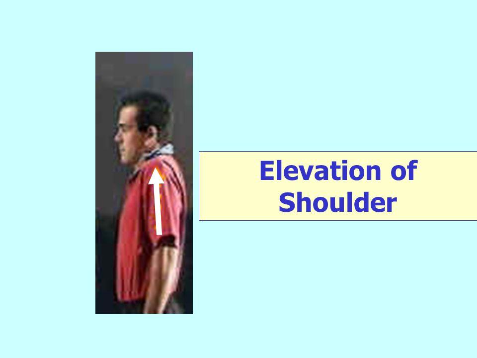 Elevation of Shoulder