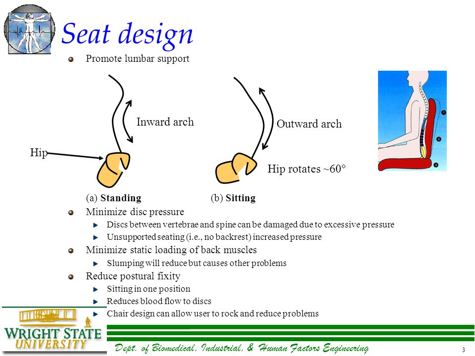 Dept. of Biomedical, Industrial, & Human Factors Engineering 3 Seat design Promote lumbar support (a) Standing(b) Sitting Minimize disc pressure Discs