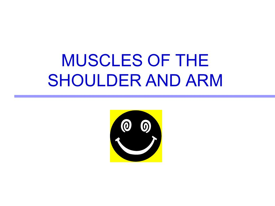 4 Origin: Anterior surface, lateral clavicle, acromion process and spine of scapula Insertion: Deltoid tubercle of humerus Action: Abducts humerus; aids in flexion, extension, and internal and external rotation Deltoid