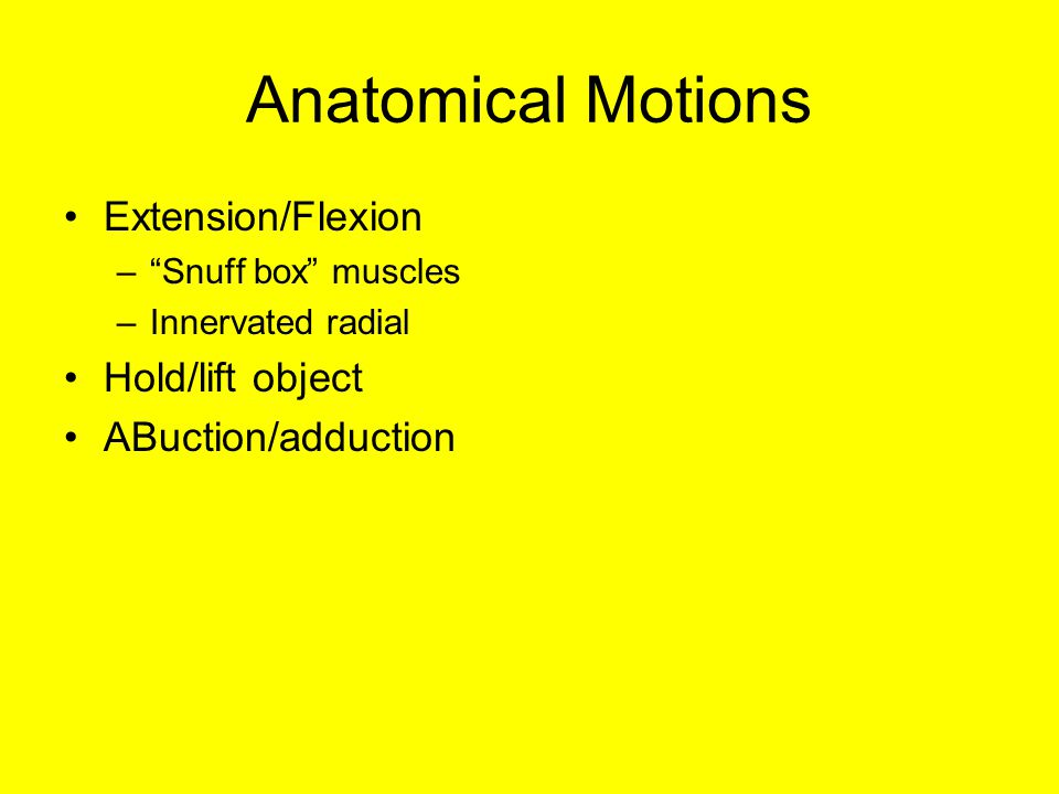 Anatomical Motions Extension/Flexion – Snuff box muscles –Innervated radial Hold/lift object ABuction/adduction