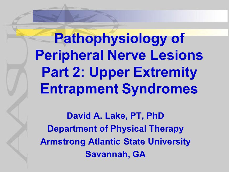 Pathophysiology of Peripheral Nerve Lesions Part 2: Upper Extremity Entrapment Syndromes David A.