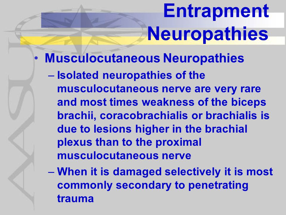 Entrapment Neuropathies Musculocutaneous Neuropathies –Isolated neuropathies of the musculocutaneous nerve are very rare and most times weakness of the biceps brachii, coracobrachialis or brachialis is due to lesions higher in the brachial plexus than to the proximal musculocutaneous nerve –When it is damaged selectively it is most commonly secondary to penetrating trauma