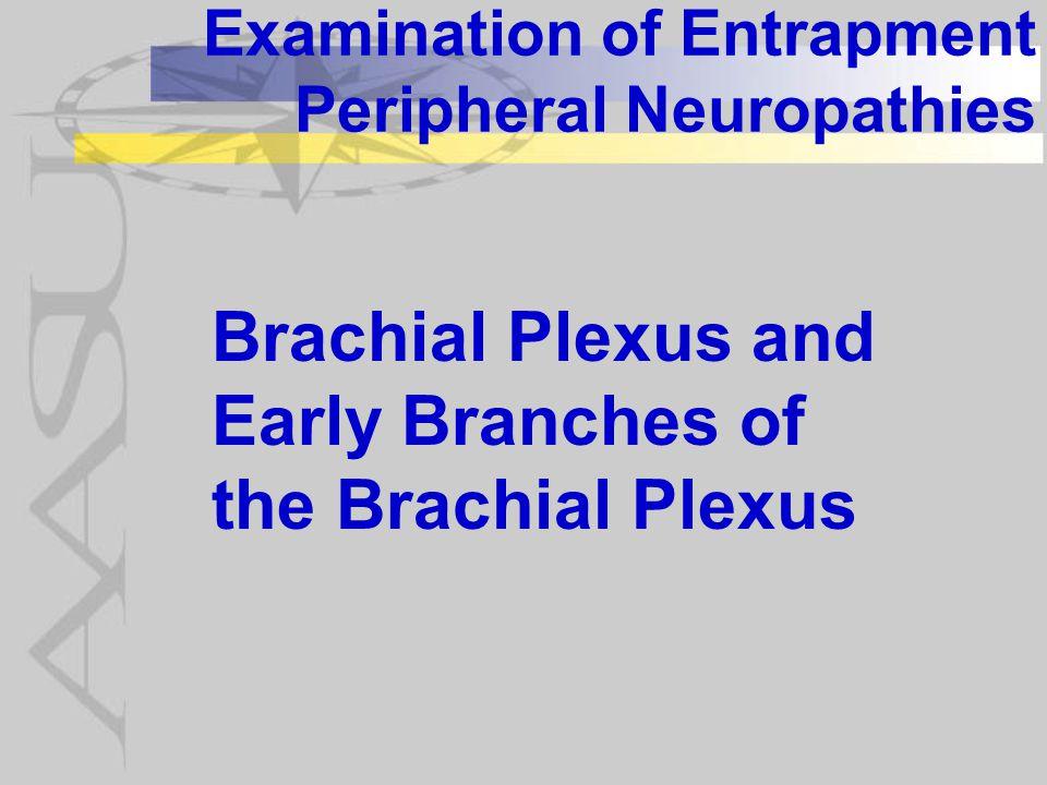 Examination of Entrapment Peripheral Neuropathies Brachial Plexus and Early Branches of the Brachial Plexus
