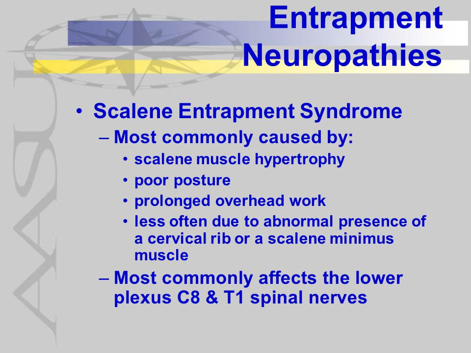 Entrapment Neuropathies Scalene Entrapment Syndrome –Most commonly caused by: scalene muscle hypertrophy poor posture prolonged overhead work less often due to abnormal presence of a cervical rib or a scalene minimus muscle –Most commonly affects the lower plexus C8 & T1 spinal nerves