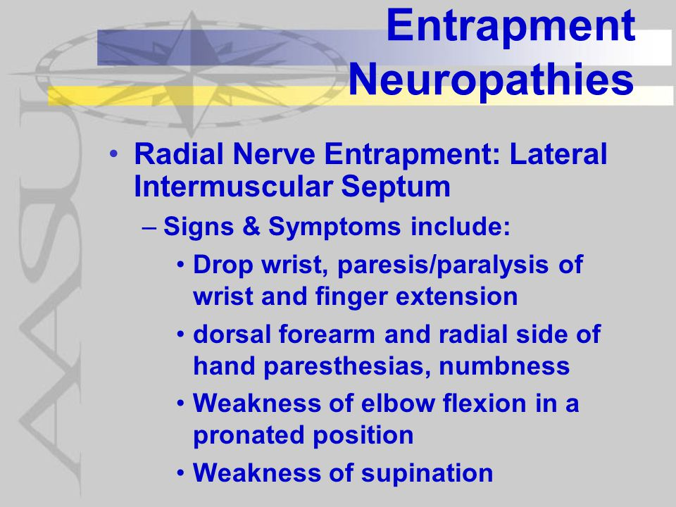 Entrapment Neuropathies Radial Nerve Entrapment: Lateral Intermuscular Septum –Signs & Symptoms include: Drop wrist, paresis/paralysis of wrist and finger extension dorsal forearm and radial side of hand paresthesias, numbness Weakness of elbow flexion in a pronated position Weakness of supination