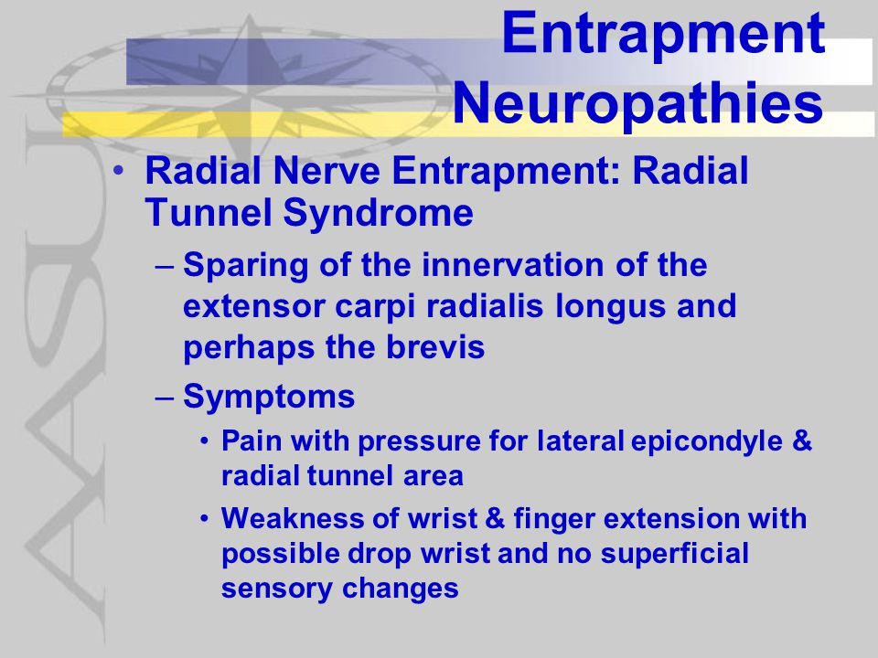 Entrapment Neuropathies Radial Nerve Entrapment: Radial Tunnel Syndrome –Sparing of the innervation of the extensor carpi radialis longus and perhaps the brevis –Symptoms Pain with pressure for lateral epicondyle & radial tunnel area Weakness of wrist & finger extension with possible drop wrist and no superficial sensory changes