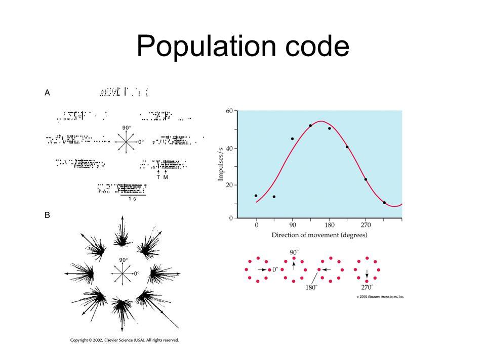 Population code
