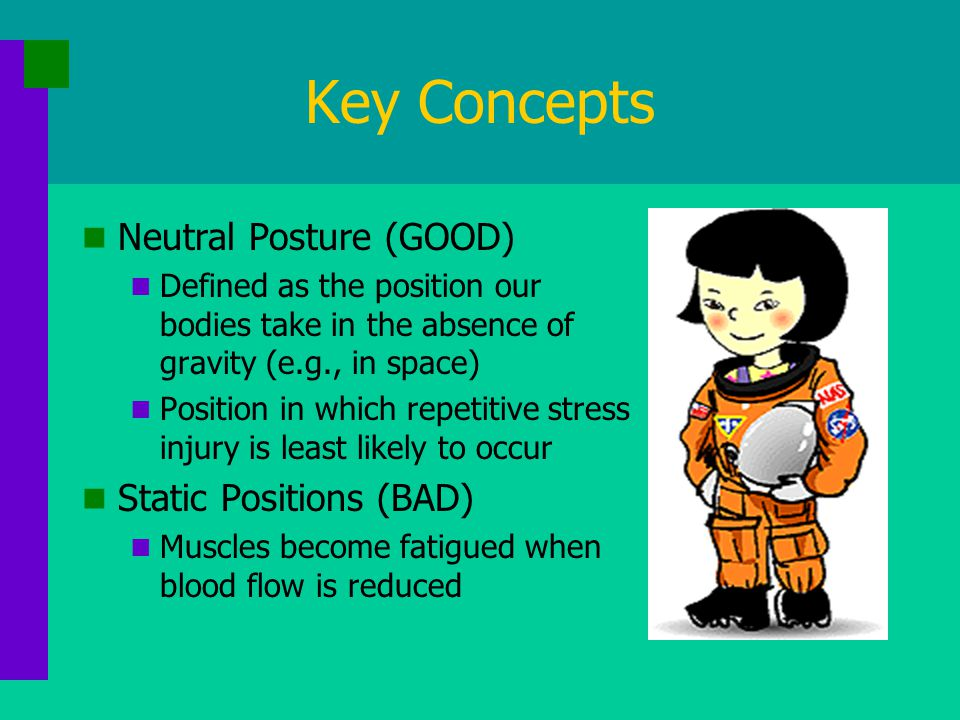 Key Concepts Neutral Posture (GOOD) Defined as the position our bodies take in the absence of gravity (e.g., in space) Position in which repetitive stress injury is least likely to occur Static Positions (BAD) Muscles become fatigued when blood flow is reduced