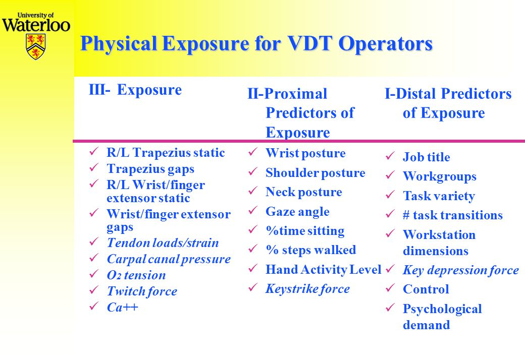 Physical Exposure for VDT Operators III- Exposure R/L Trapezius static Trapezius gaps R/L Wrist/finger extensor static Wrist/finger extensor gaps Tendon loads/strain Carpal canal pressure O 2 tension Twitch force Ca++ II-Proximal Predictors of Exposure Wrist posture Shoulder posture Neck posture Gaze angle %time sitting % steps walked Hand Activity Level Keystrike force I-Distal Predictors of Exposure Job title Workgroups Task variety # task transitions Workstation dimensions Key depression force Control Psychological demand