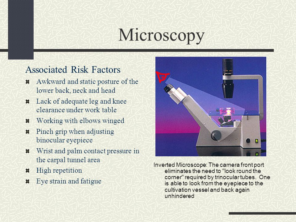 Microscopy Associated Risk Factors Awkward and static posture of the lower back, neck and head Lack of adequate leg and knee clearance under work table Working with elbows winged Pinch grip when adjusting binocular eyepiece Wrist and palm contact pressure in the carpal tunnel area High repetition Eye strain and fatigue Inverted Microscope: The camera front port eliminates the need to look round the corner required by trinocular tubes.
