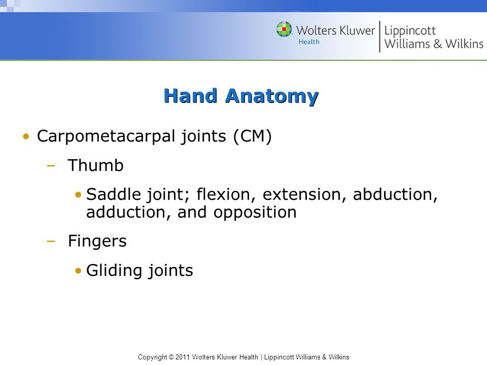 Copyright © 2011 Wolters Kluwer Health | Lippincott Williams & Wilkins Hand Anatomy Carpometacarpal joints (CM) –Thumb Saddle joint; flexion, extension, abduction, adduction, and opposition –Fingers Gliding joints