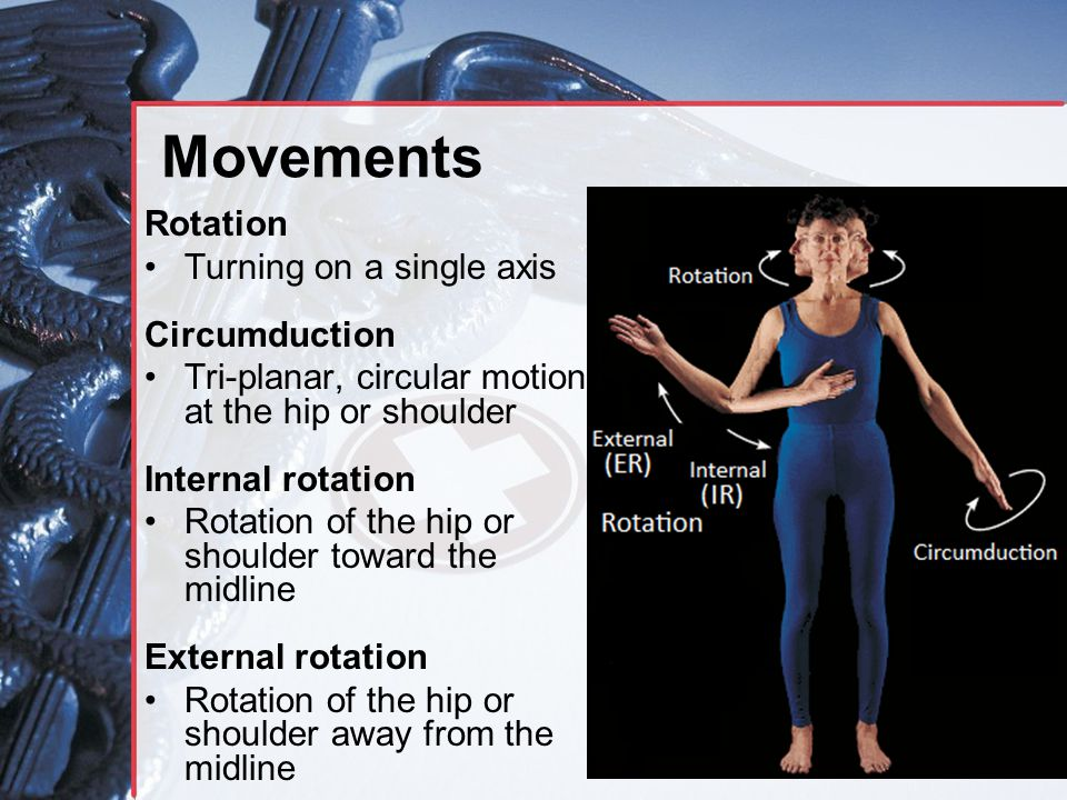 Movements Rotation Turning on a single axis Circumduction Tri-planar, circular motion at the hip or shoulder Internal rotation Rotation of the hip or