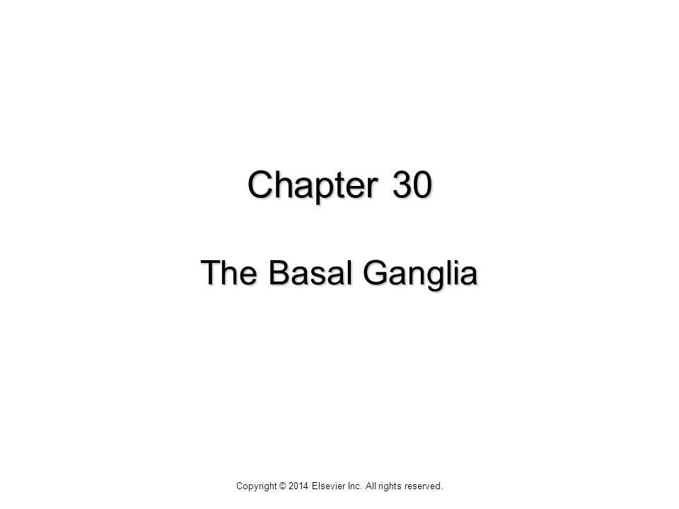 Chapter 30 The Basal Ganglia Copyright © 2014 Elsevier Inc. All rights reserved.