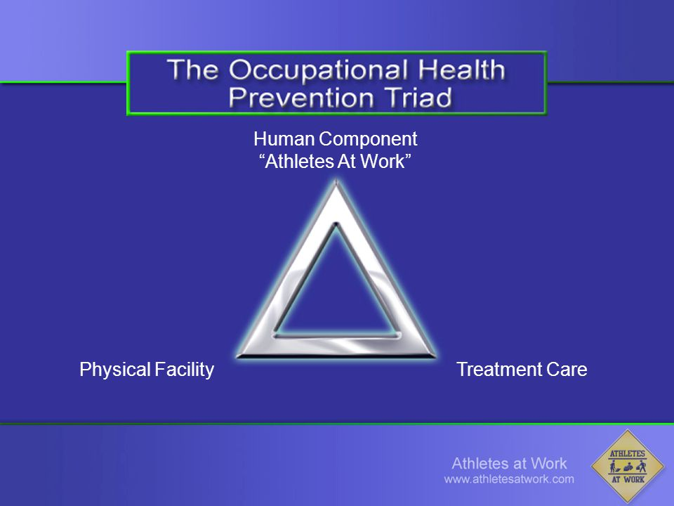 Human Component Athletes At Work Physical FacilityTreatment Care