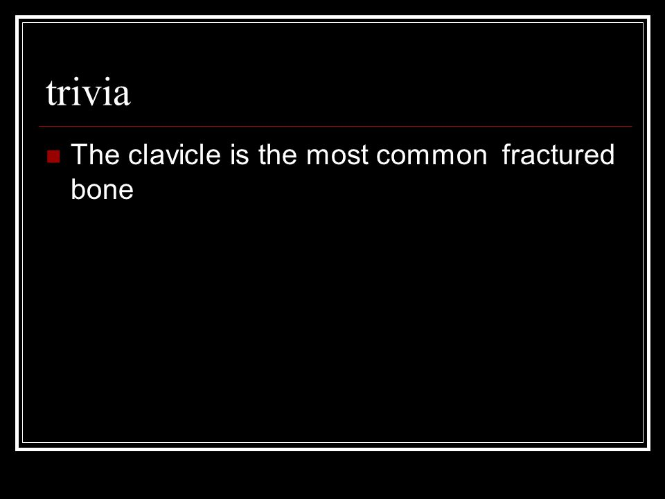 trivia The clavicle is the most common fractured bone