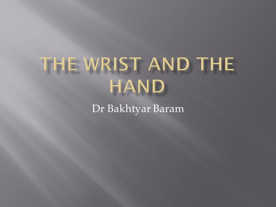 Dr Bakhtyar Baram
