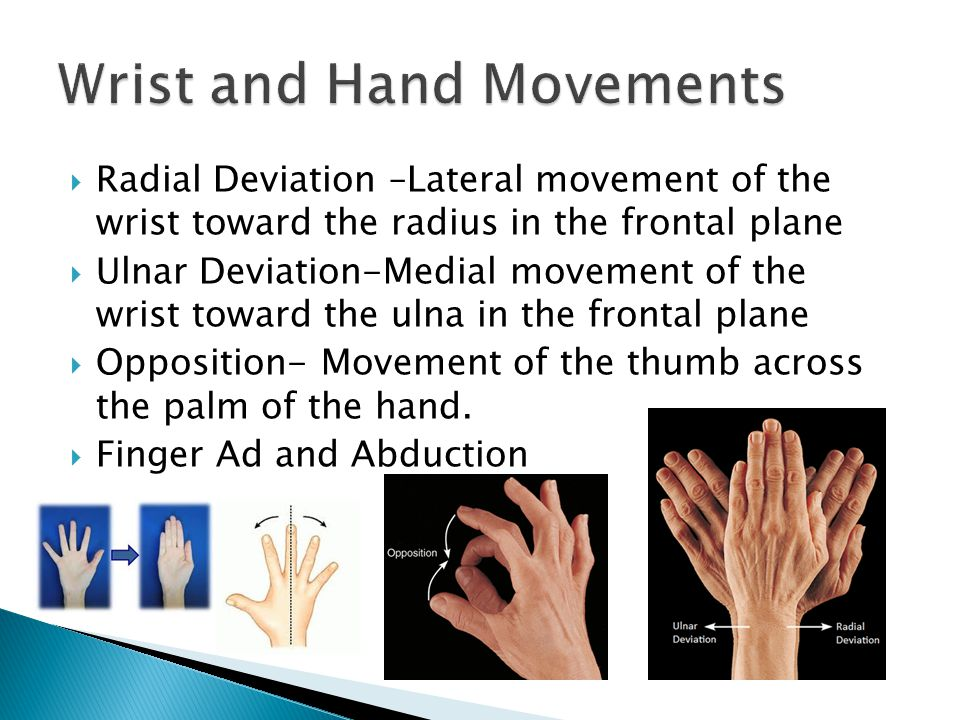  Radial Deviation –Lateral movement of the wrist toward the radius in the frontal plane  Ulnar Deviation-Medial movement of the wrist toward the ulna in the frontal plane  Opposition- Movement of the thumb across the palm of the hand.