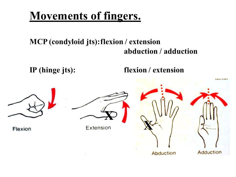 Movements of fingers.
