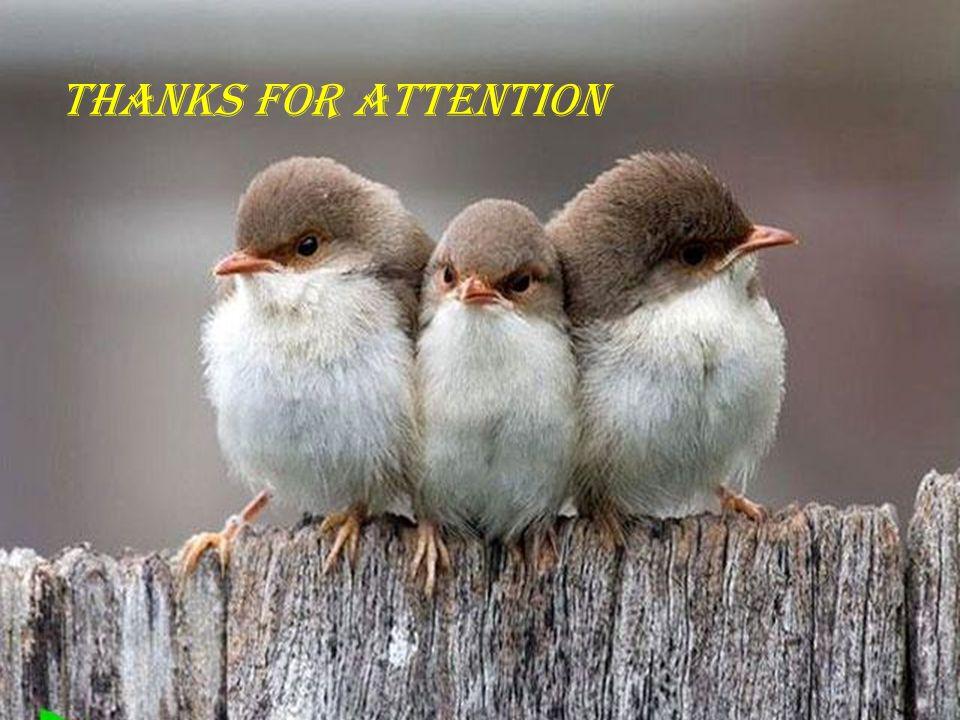Dianat A, M.D Vaziri A, M.D THANKS FOR ATTENTION