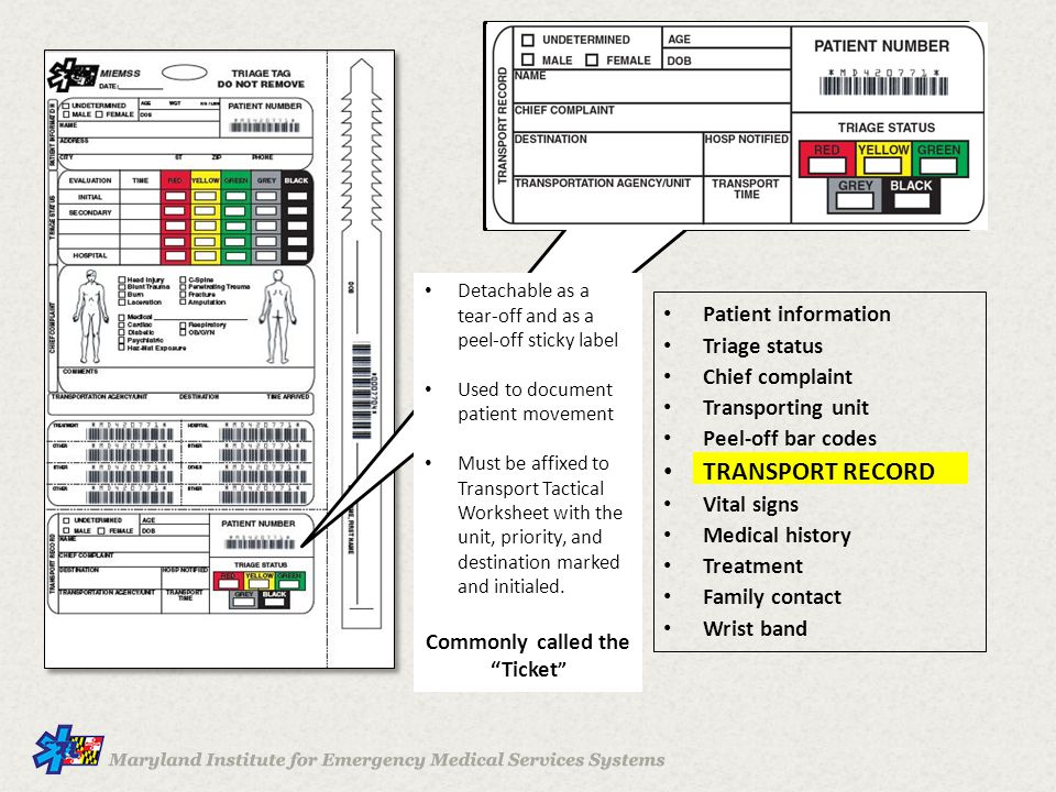 Patient information Triage status Chief complaint Transporting unit Peel-off bar codes TRANSPORT RECORD Vital signs Medical history Treatment Family contact Wrist band Detachable as a tear-off and as a peel-off sticky label Used to document patient movement Must be affixed to Transport Tactical Worksheet with the unit, priority, and destination marked and initialed.