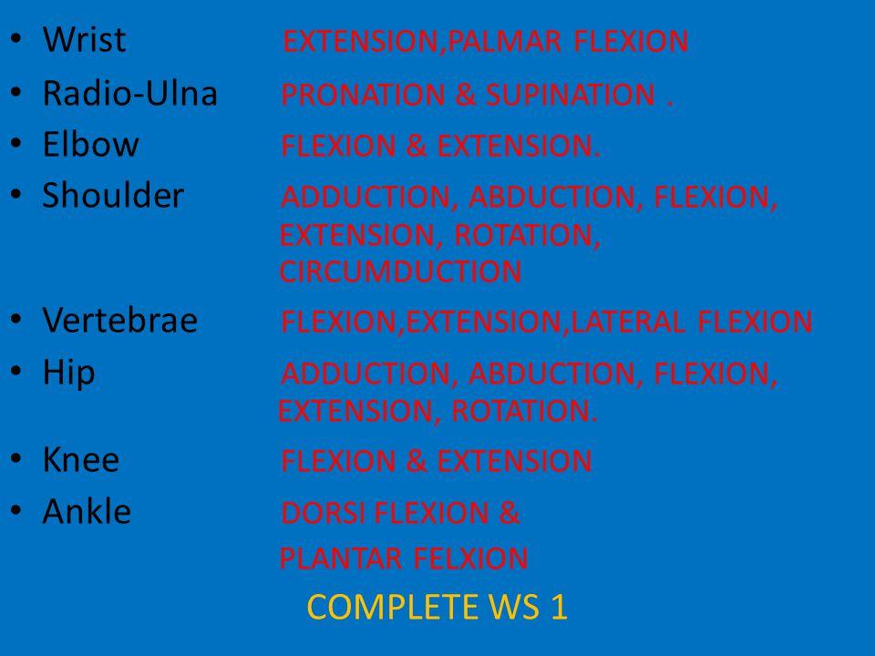 Wrist EXTENSION,PALMAR FLEXION Radio-Ulna PRONATION & SUPINATION.