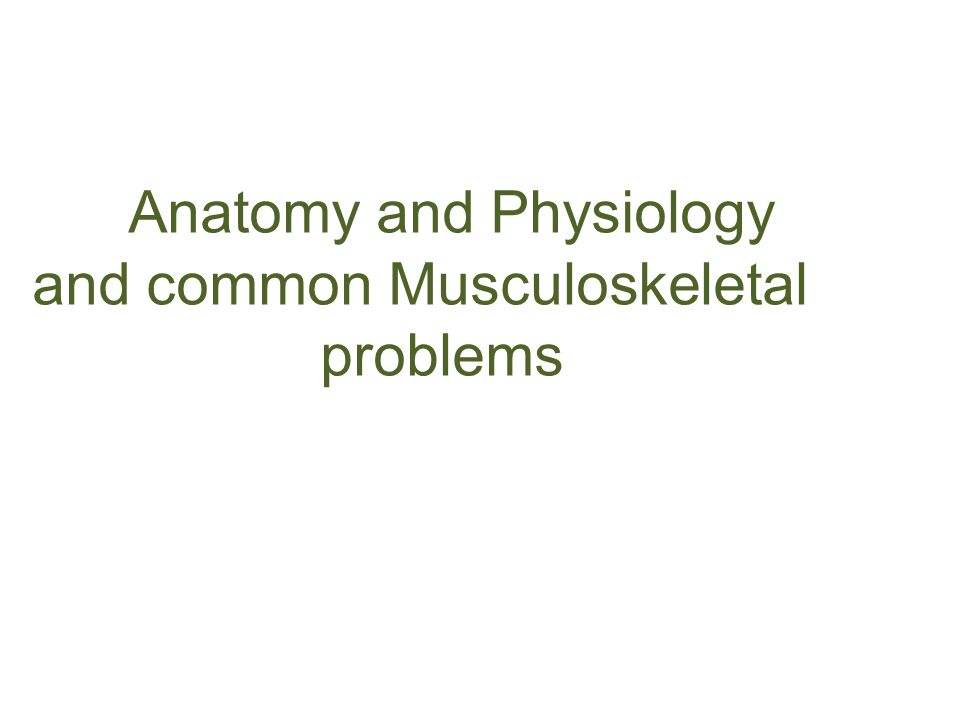Anatomy and Physiology and common Musculoskeletal problems