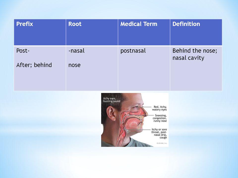 PrefixRootMedical TermDefinition Post- After; behind -nasal nose postnasalBehind the nose; nasal cavity