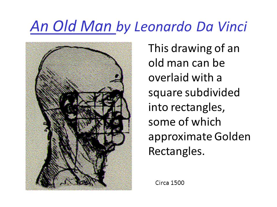 An Old Man by Leonardo Da Vinci This drawing of an old man can be overlaid with a square subdivided into rectangles, some of which approximate Golden