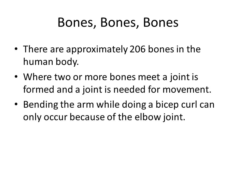 Bones, Bones, Bones There are approximately 206 bones in the human body.