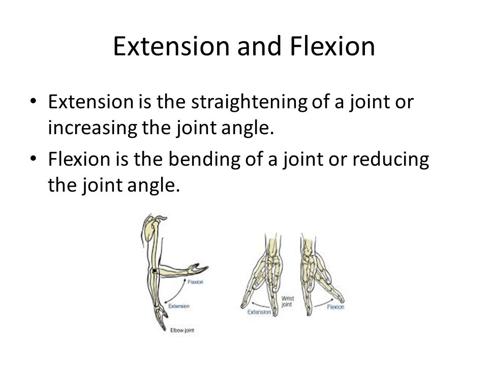 Extension and Flexion Extension is the straightening of a joint or increasing the joint angle.