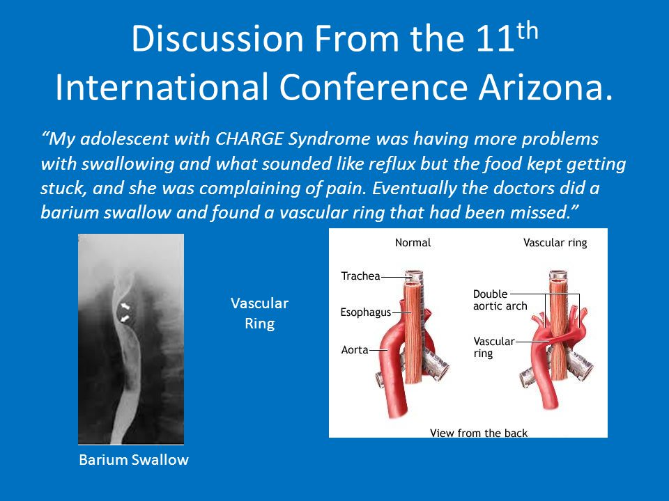Discussion From the 11 th International Conference Arizona.