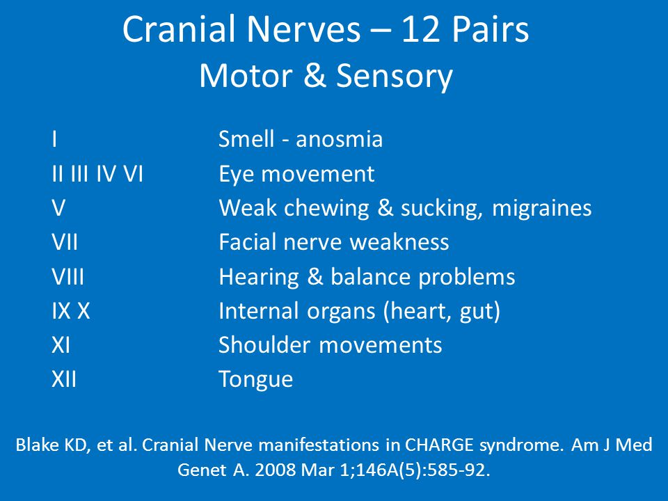 Cranial Nerves – 12 Pairs Motor & Sensory ISmell - anosmia II III IV VIEye movement VWeak chewing & sucking, migraines VIIFacial nerve weakness VIIIHearing & balance problems IX X Internal organs (heart, gut) XIShoulder movements XIITongue Blake KD, et al.