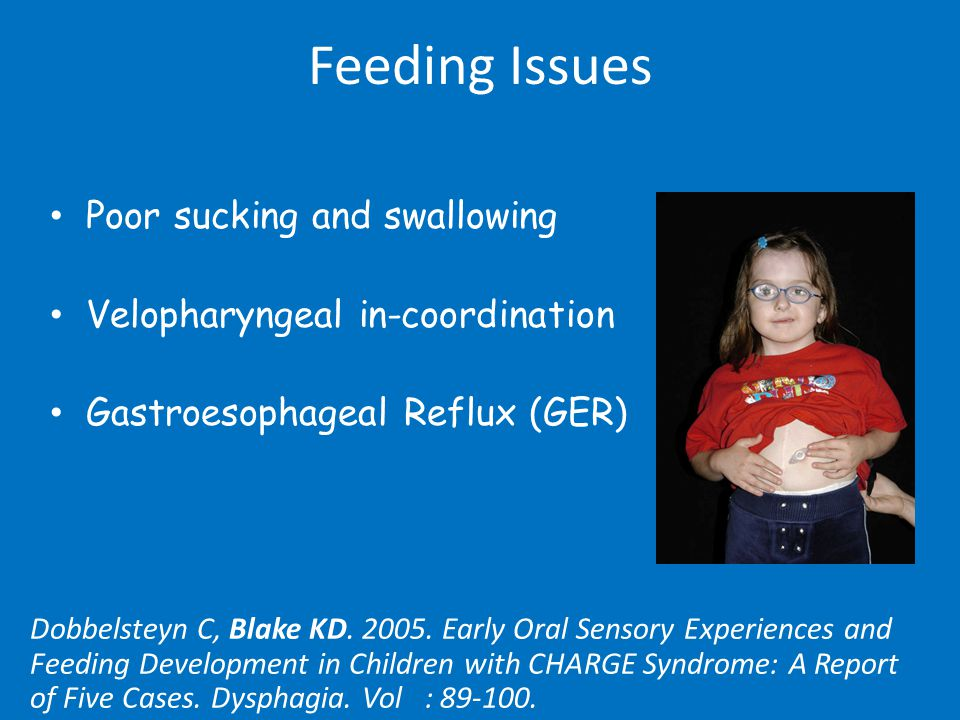 Feeding Question #1 My 2 year old has been getting more picky and will not eat lumps.