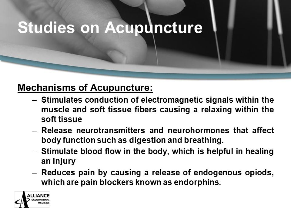 Studies on Acupuncture Mechanisms of Acupuncture: –Stimulates conduction of electromagnetic signals within the muscle and soft tissue fibers causing a relaxing within the soft tissue –Release neurotransmitters and neurohormones that affect body function such as digestion and breathing.