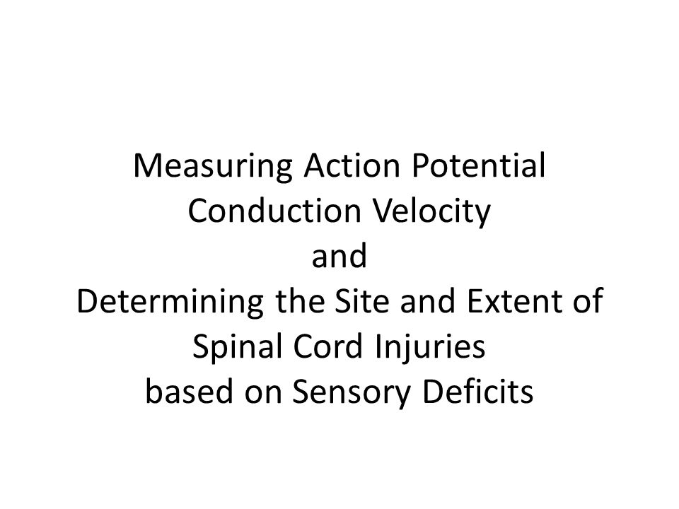 Measuring Action Potential Conduction Velocity and Determining the Site and Extent of Spinal Cord Injuries based on Sensory Deficits