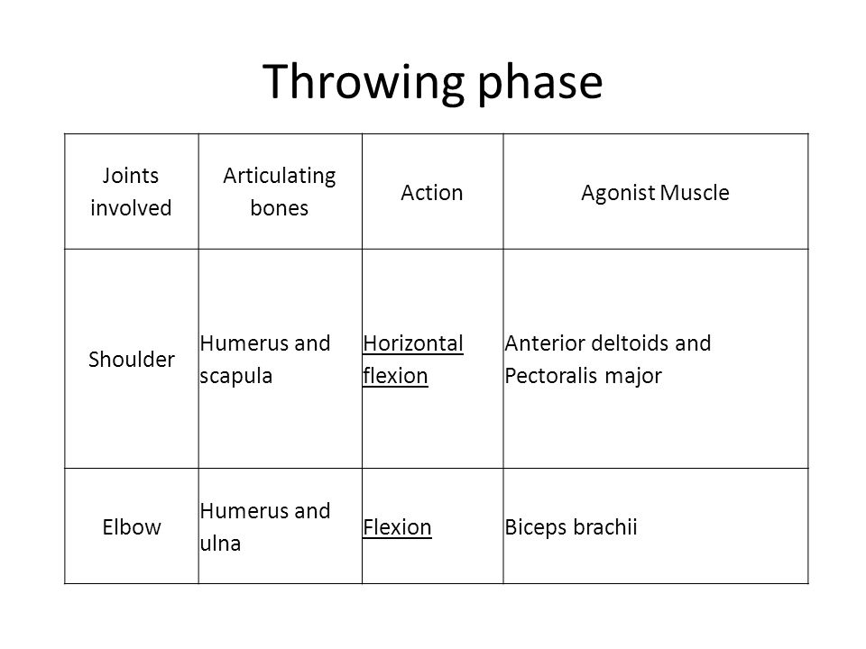 Throwing phase Joints involved Articulating bones ActionAgonist Muscle Shoulder Humerus and scapula Horizontal flexion Anterior deltoids and Pectorali