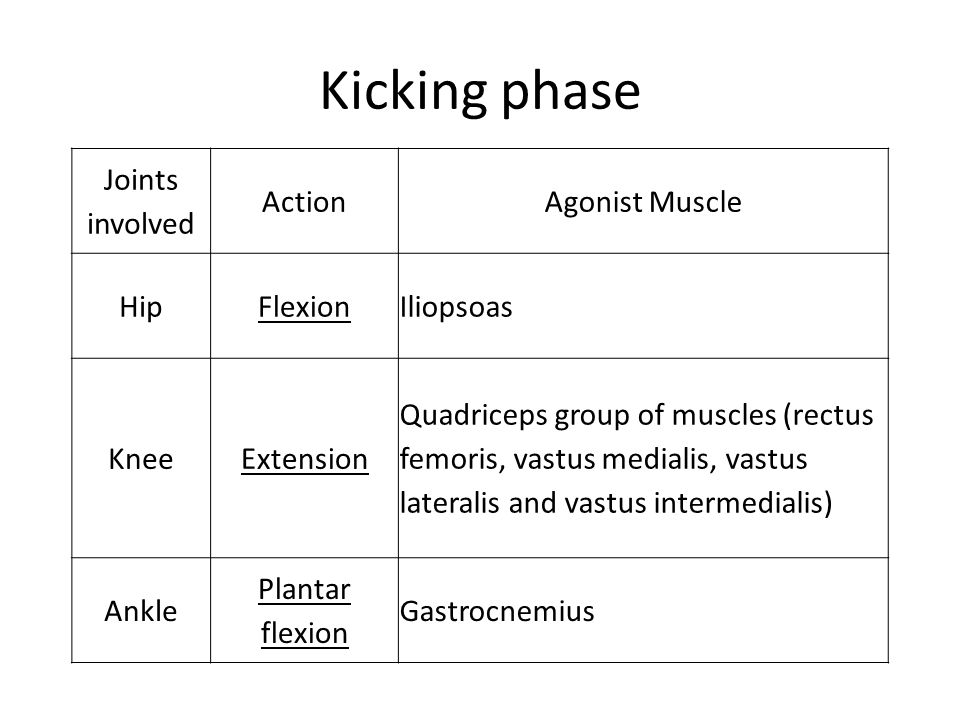 Kicking phase Joints involved ActionAgonist Muscle HipFlexionIliopsoas KneeExtension Quadriceps group of muscles (rectus femoris, vastus medialis, vas