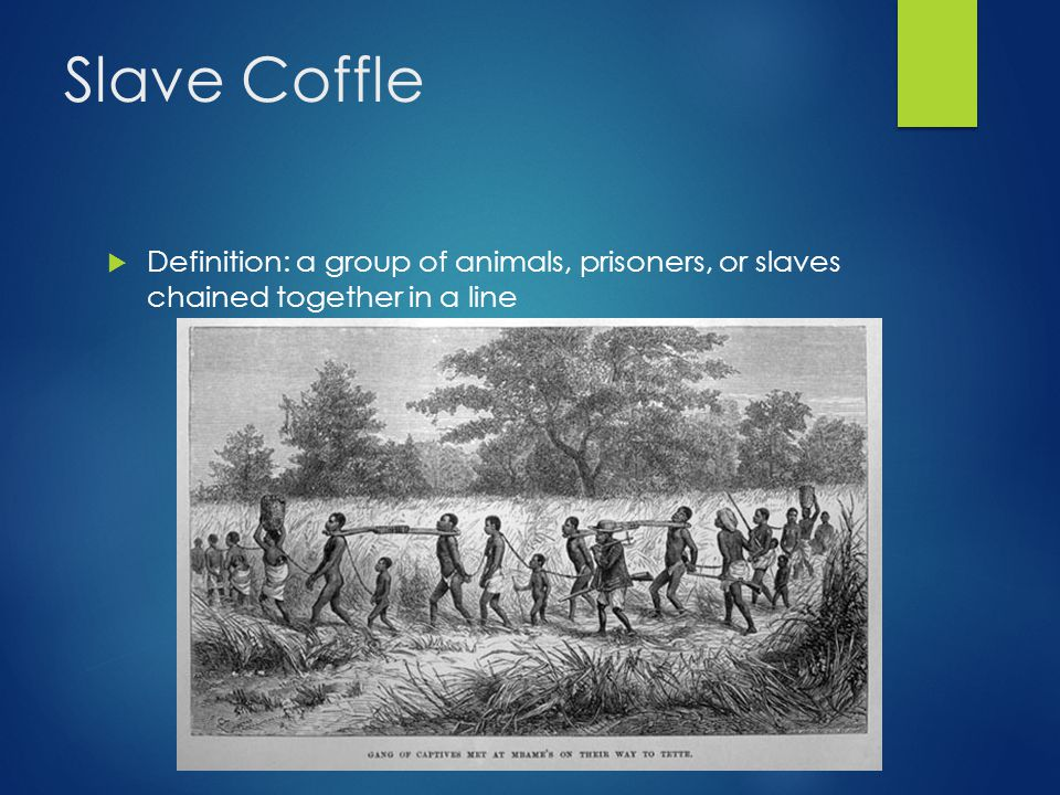 Slave Coffle  Definition: a group of animals, prisoners, or slaves chained together in a line