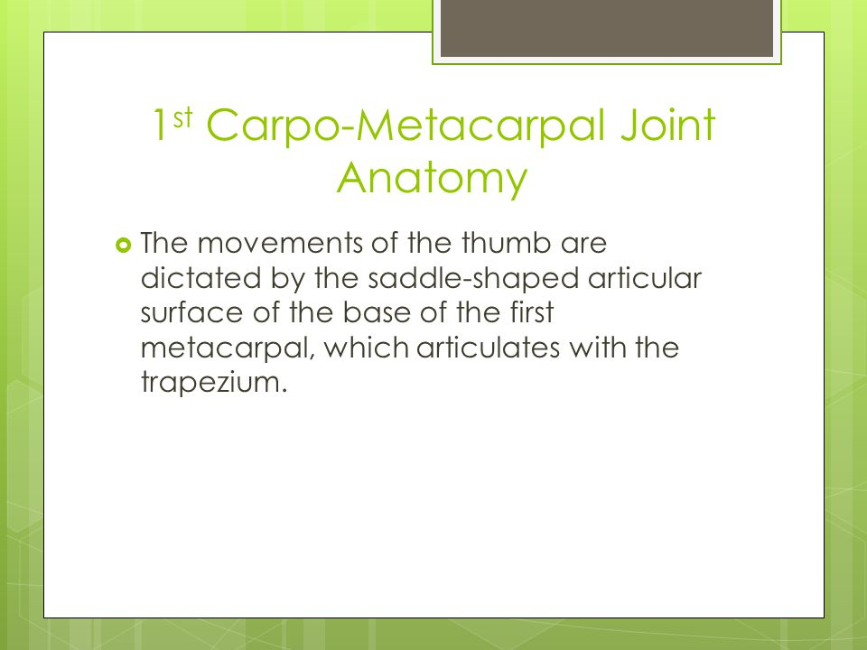 1 st Carpo-Metacarpal Joint Anatomy  The movements of the thumb are dictated by the saddle-shaped articular surface of the base of the first metacarpal, which articulates with the trapezium.