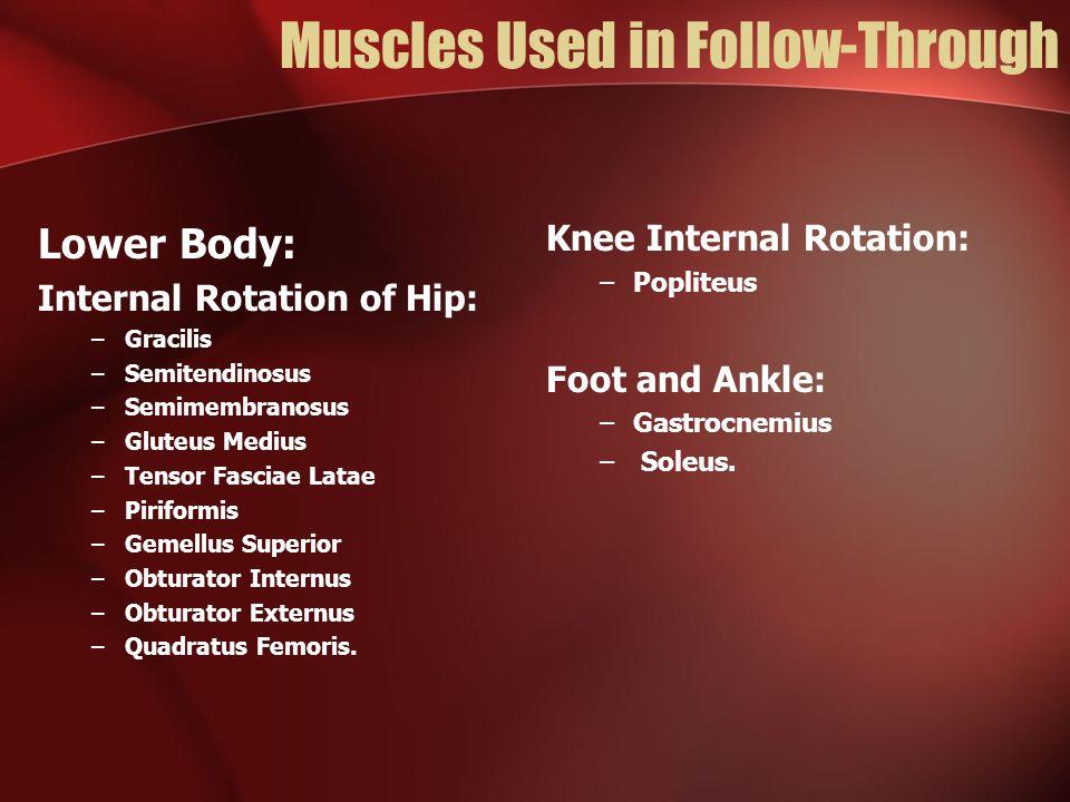 Muscles Used in Follow-Through Lower Body: Internal Rotation of Hip: –Gracilis –Semitendinosus –Semimembranosus –Gluteus Medius –Tensor Fasciae Latae –Piriformis –Gemellus Superior –Obturator Internus –Obturator Externus –Quadratus Femoris.