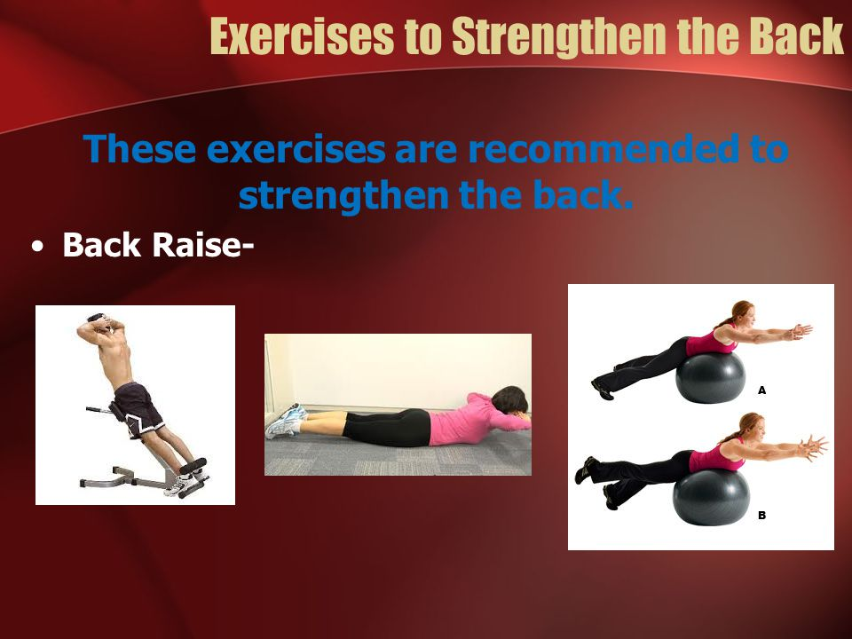 Exercises to Strengthen the Back These exercises are recommended to strengthen the back. Back Raise-