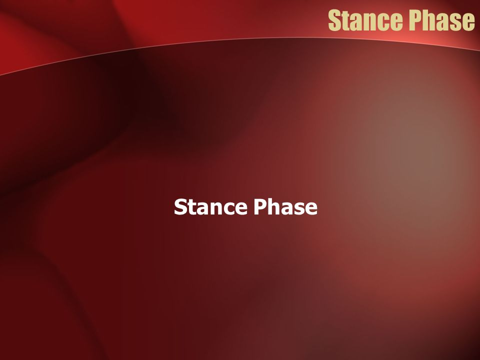 Stance Phase