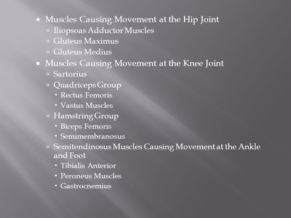  Muscles Causing Movement at the Hip Joint  Iliopsoas Adductor Muscles  Gluteus Maximus  Gluteus Medius  Muscles Causing Movement at the Knee Joint  Sartorius  Quadriceps Group  Rectus Femoris  Vastus Muscles  Hamstring Group  Biceps Femoris  Semimembranosus  Semitendinosus Muscles Causing Movement at the Ankle and Foot  Tibialis Anterior  Peroneus Muscles  Gastrocnemius