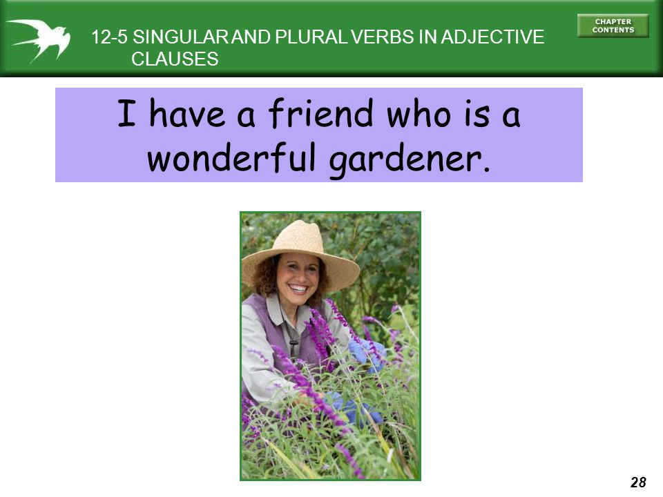 28 12-5 SINGULAR AND PLURAL VERBS IN ADJECTIVE CLAUSES I have a friend who is a wonderful gardener.