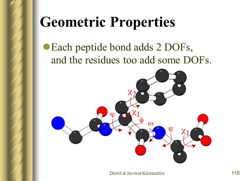 Direct & Inverse Kinematics110 Geometric Properties Each peptide bond adds 2 DOFs, and the residues too add some DOFs.