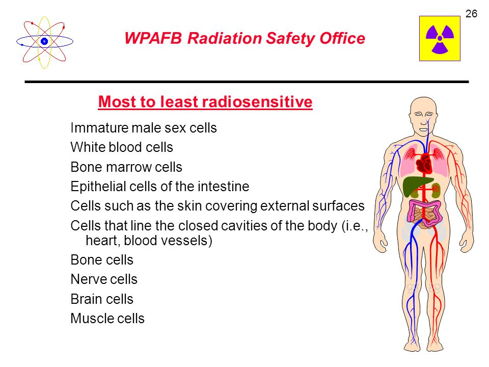 WPAFB Radiation Safety Office 25 Linear/Threshold Confirmed Data