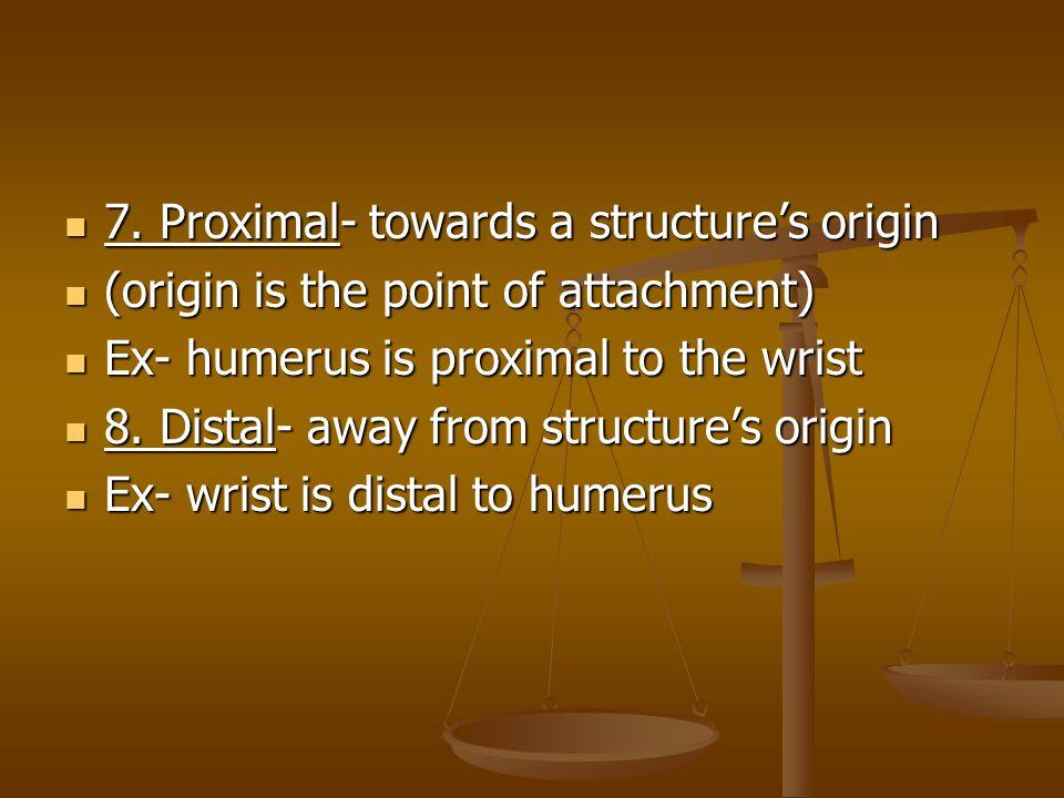 7.Proximal- towards a structure's origin 7.