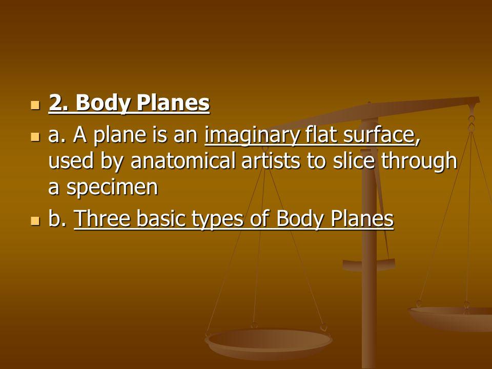 2.Body Planes 2. Body Planes a.
