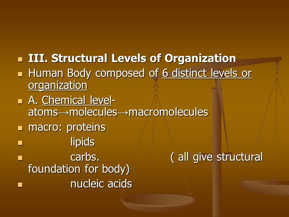 III.Structural Levels of Organization III.