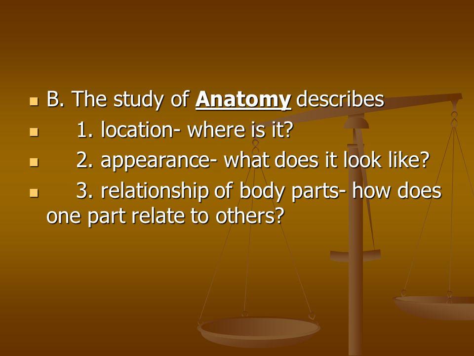 B.The study of Anatomy describes B. The study of Anatomy describes 1.